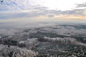 Luftaufnahme - Der Wald im Winter