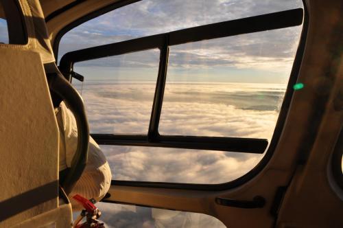 AS350 Window
